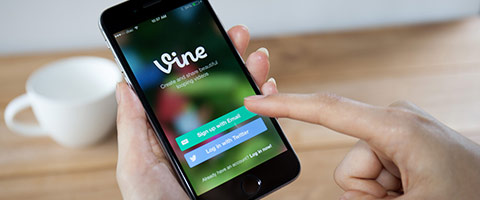 Vine on a phone